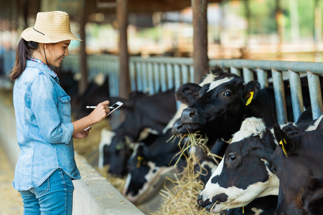 Happy farmer recording data of her cows on her iPad